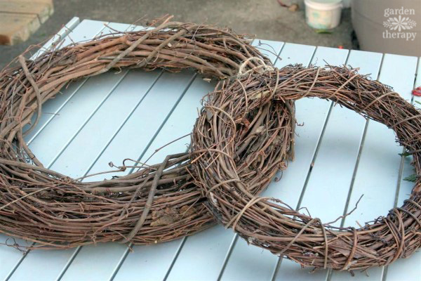 Make an evergreen wreath using a grapevine form