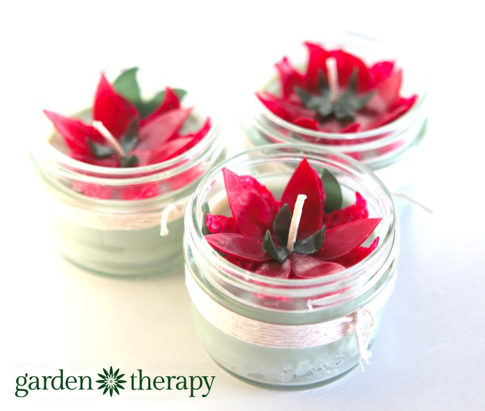 Poinsettia Beeswax Mason Jar Candles