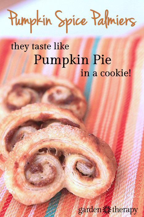 Pumpkin Spice Palmiers Recipe - These cookies taste just like pumpkin pie and take 5 minutes to make!