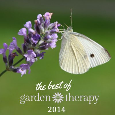 Garden Therapy's Best of 2014