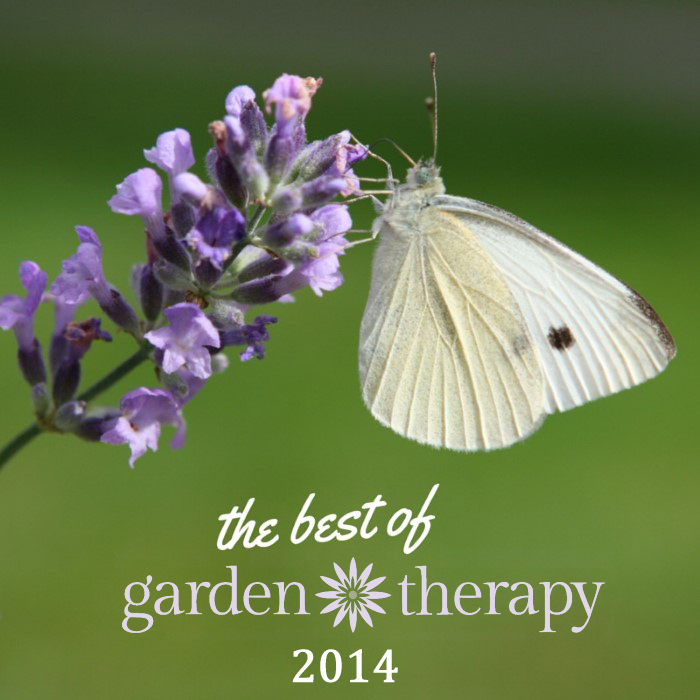 The Best Of Garden Therapy Www.gardentherapy.ca For 2014