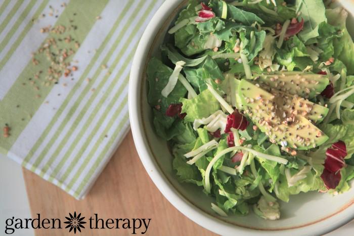 Raw Energy Shaker Recipe - add chia, hemp, buckwheat and sesame to every meal easily