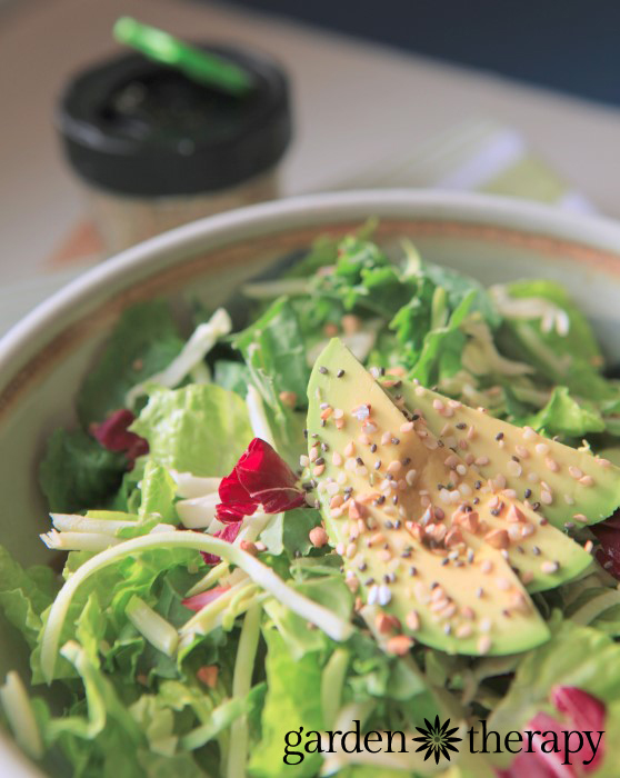 Raw Energy Shaker Recipe - adding healthy raw seeds to salads