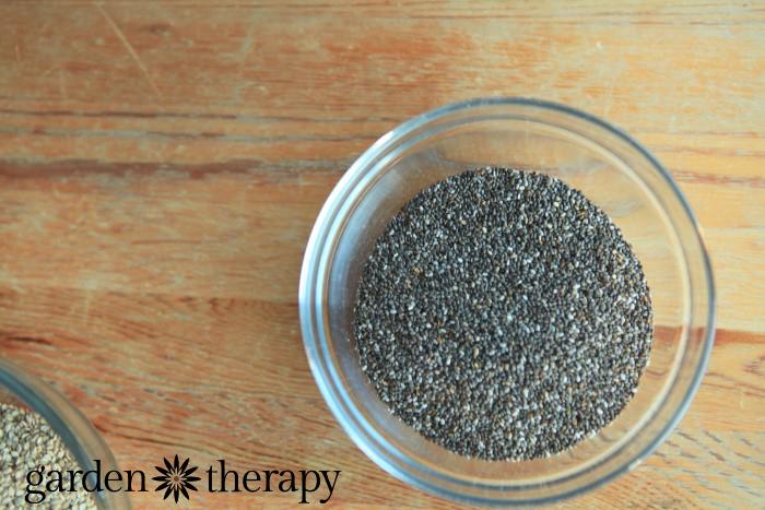 Raw Energy Shaker Recipe - chia seeds
