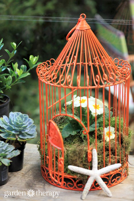 Seaside Birdcage planter from the Blue Greenhouse Seaside Garden Design Feature
