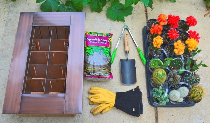 Cactus Garden Components