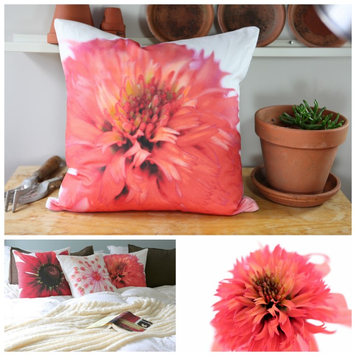 Echinacea Coral Double Coneflower printed on soft cotton linen blend fabric and made into throw pillows!