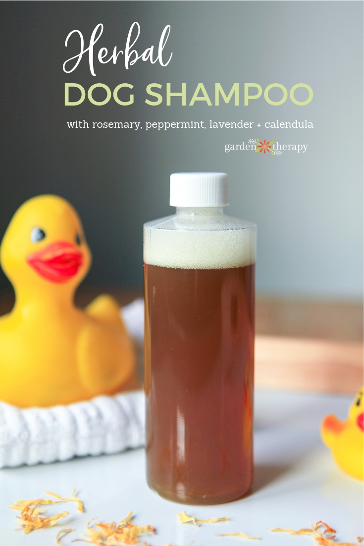 Herbal Dog Shampoo with rosemary, peppermint, lavender and calendula