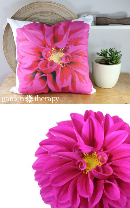 Pink Dahlia printed on soft cotton linen blend fabric and made into throw pillows!