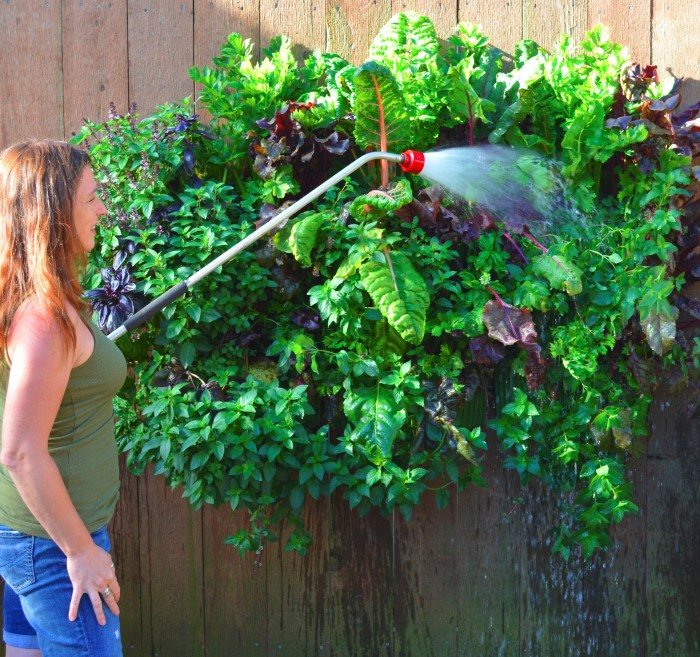 Shawna Coronado   Author Of Grow A Living Wall Shares How To Build A  Vertical Garden