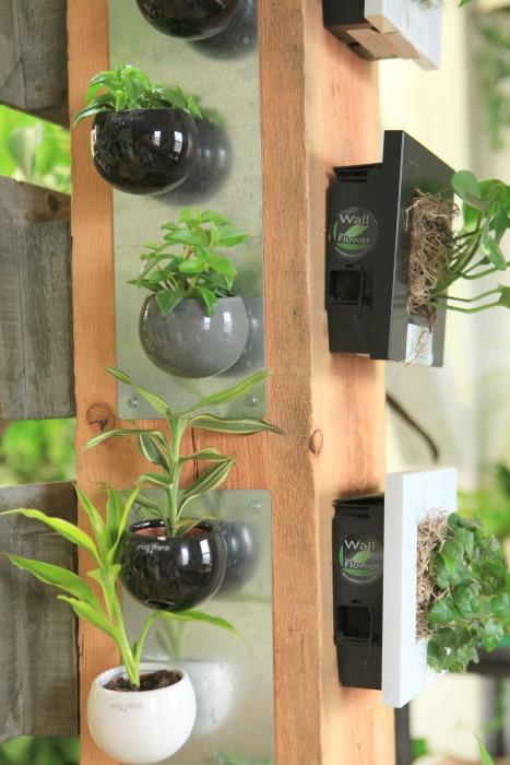 magnetic plant pots