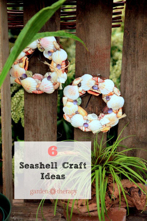6 Seashell Craft Ideas Using Plants