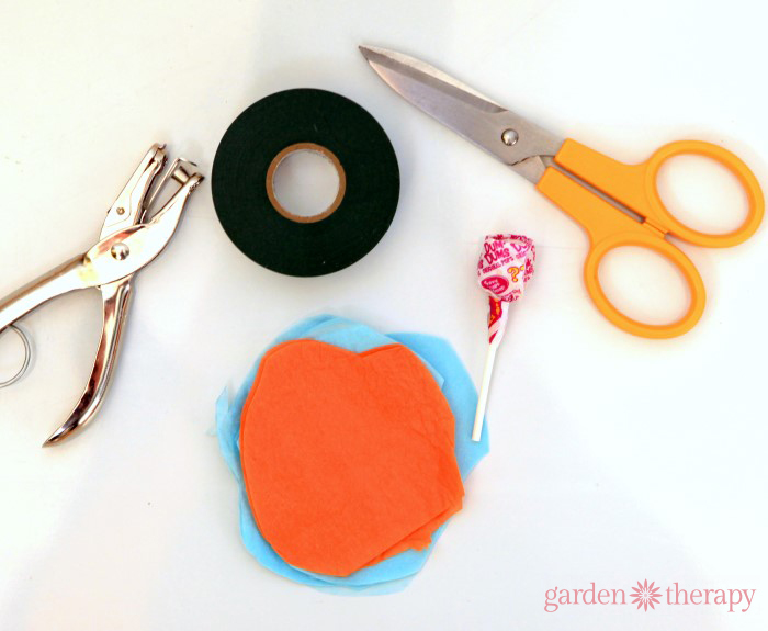How to Make Lollipop Flowers Materials