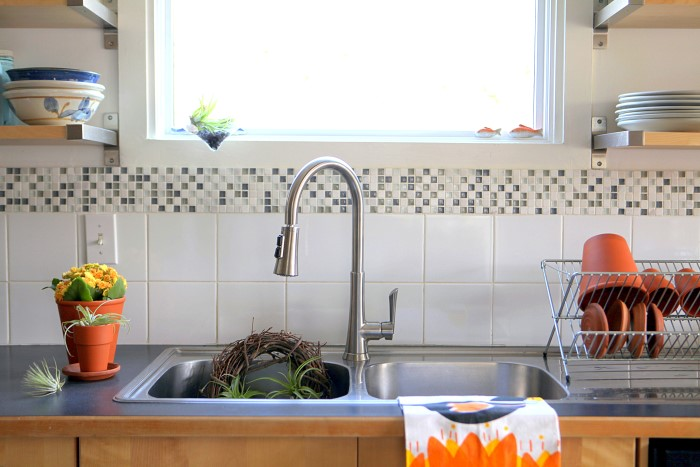 Kitchen Sink AFTER installing Pfister faucet - used as gardening sink