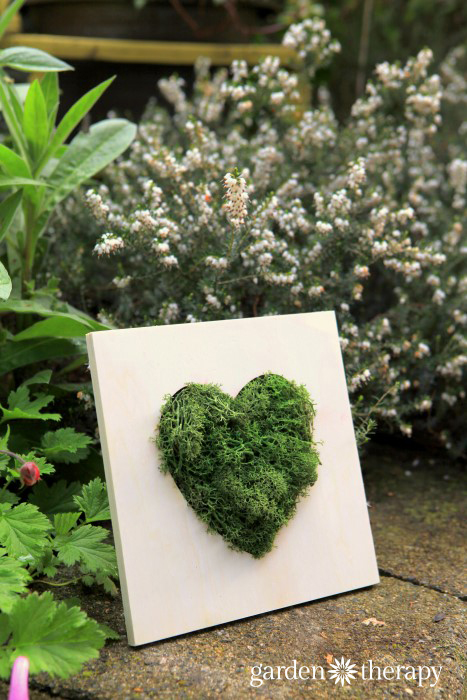Moss Heart Wall Art 10 minute DIY Project