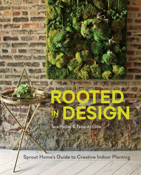 Rooted in Design Sprout Home's Guide to Creative Indoor Planting