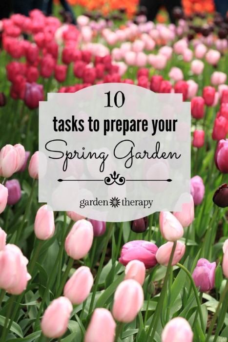 These are the 10 tasks to tackle in the spring to get your garden ready for the year