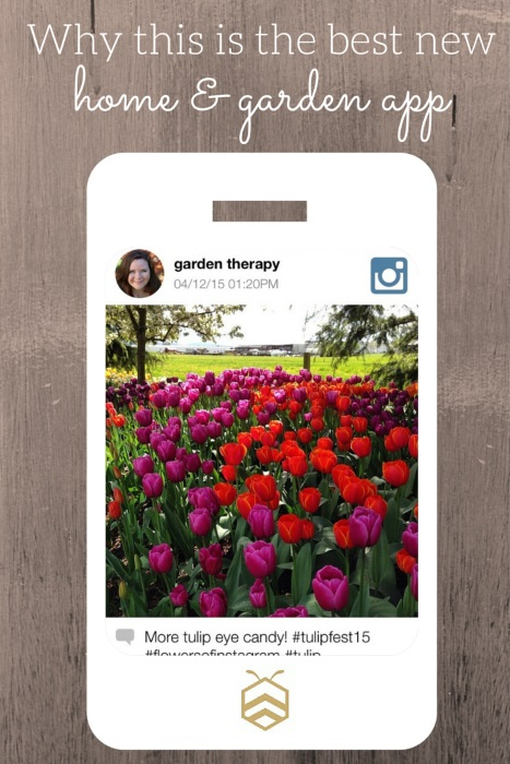 This is the best new home and garden app and here is why