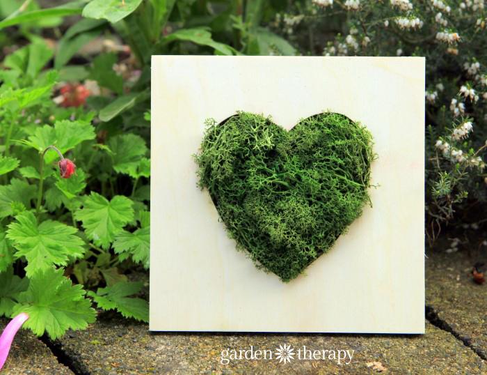 Reindeer Moss Heart Wall Art Frame