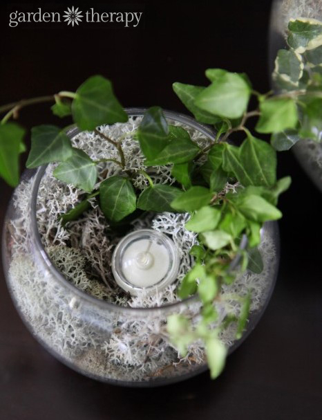 Add a waterproff LED light to make a glowing terrarium