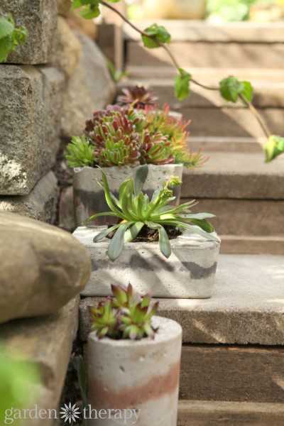 Garden Made Book Concrete Planters project