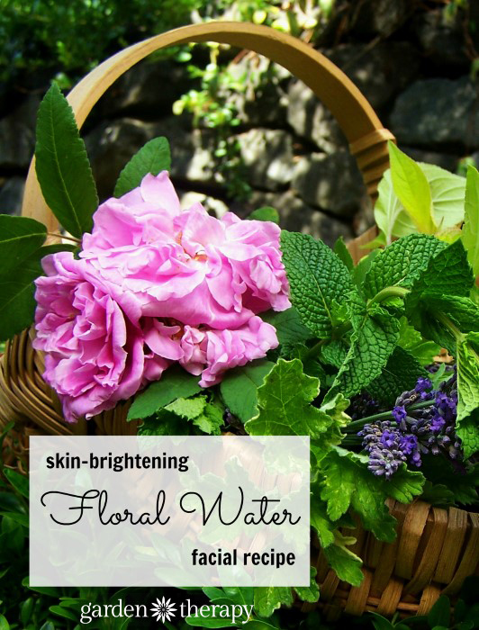 How to Make a Floral Water Facial