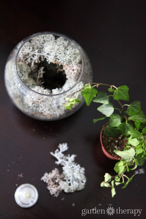 Nightlight Terrarium materials