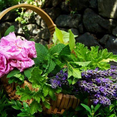 Floral Water Skin Brightening Recipe