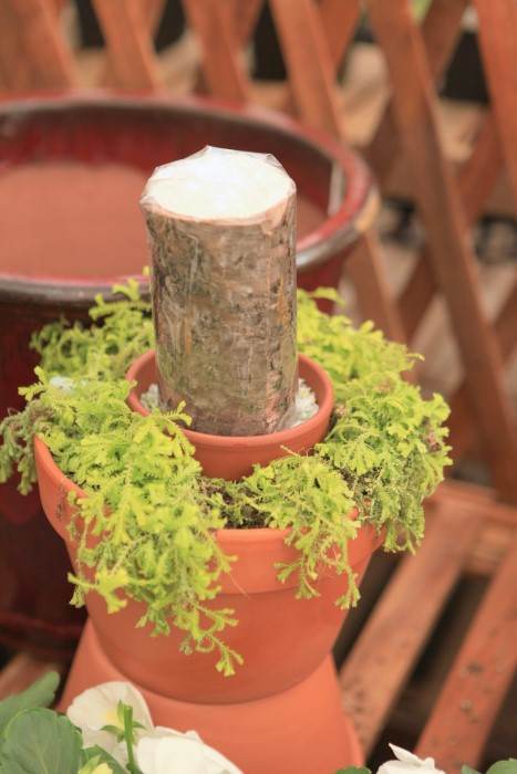 mossy candle planter idea
