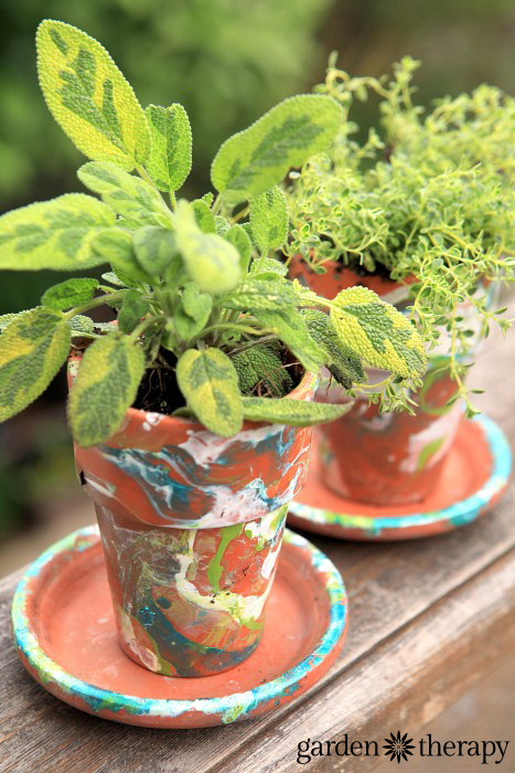 variegated sage in a DIY nail polish marbled terracotta garden pot