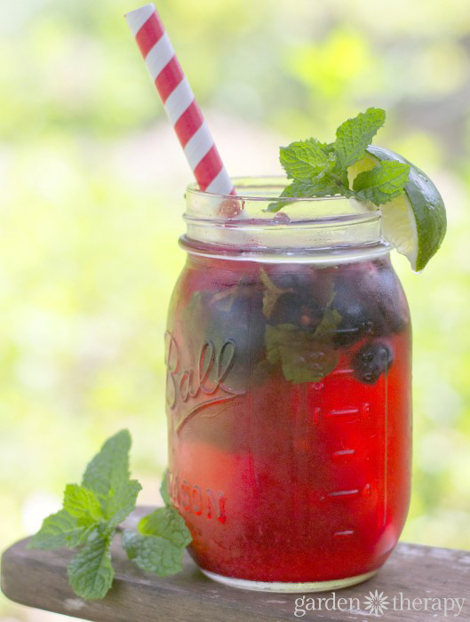 Beat the Heat with a Garden Fresh Cocktail - Triple Berry Fizz