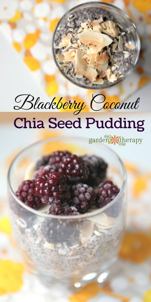 Blackberry Coconut Chia Seed Dessert