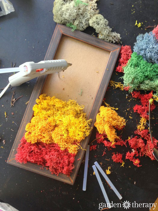 Rainbow Moss Art