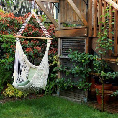 The Life of a Garden Blogger: Garden Therapy