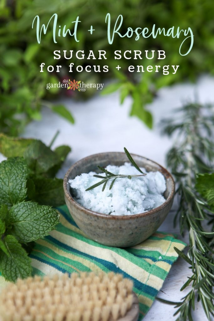 Mint Rosemary Focus Sugar Scrub