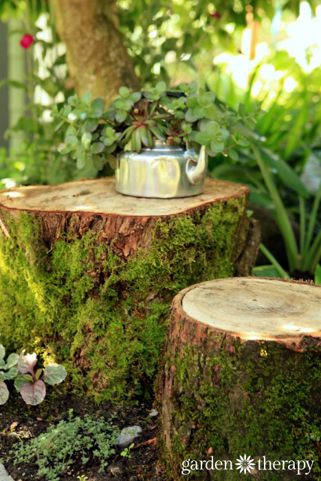 Rustic children's garden table and chairs with a teapot planted with succulents