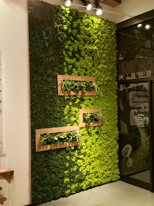 Inspiration moss wall living art garden therapy for Interior designs with plants