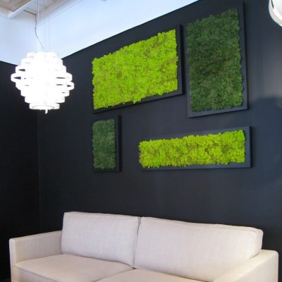 Moss is the New Paint: How to Create Art with Moss