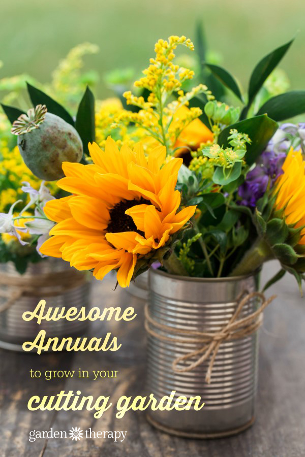 Awesome annuals to grow in your cutting garden for homegrown flower arrangements