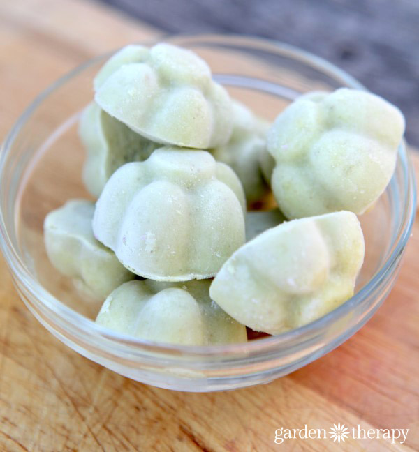 Avocado ice cream Cubes for Yonanas
