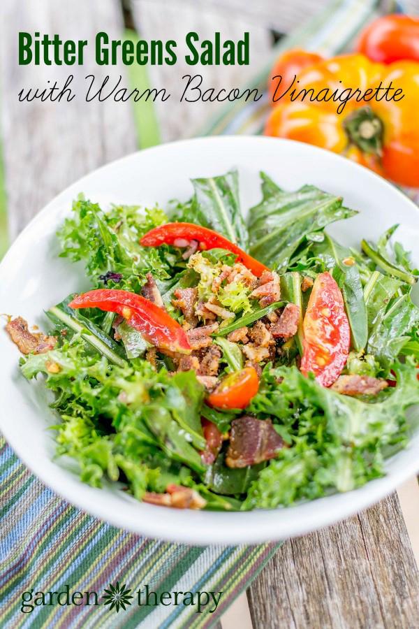 Bitter Greens Salad with warm bacon vinaigrette
