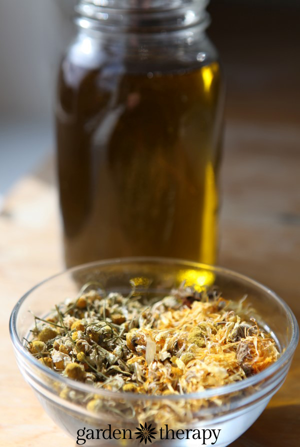 Calendula infused olive oil for skincare products