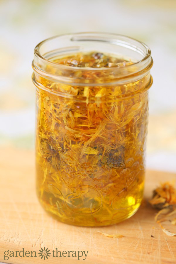 Calendula sun-infused olive oil
