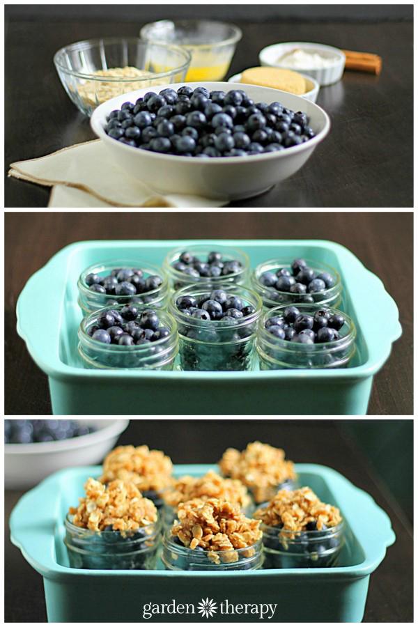Easy Blueberry Crisp