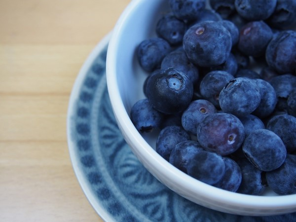 Grow It Eat It Blueberries
