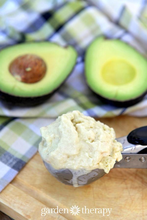 Homemade cocnut avocado ice cream