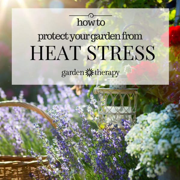 Protect You Garden And Yourself From Over Heating
