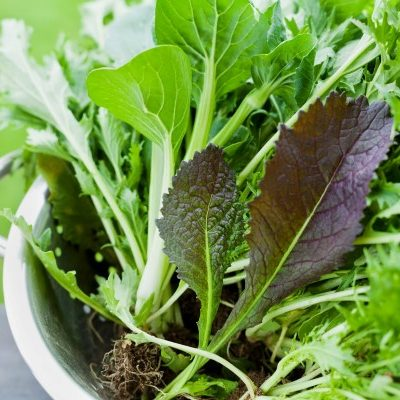 Unusual Greens to Try in Your Next Salad