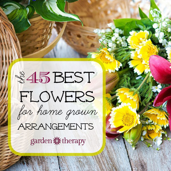 The 45 Best Flowers for Homegrown Arrangements (Cropped)