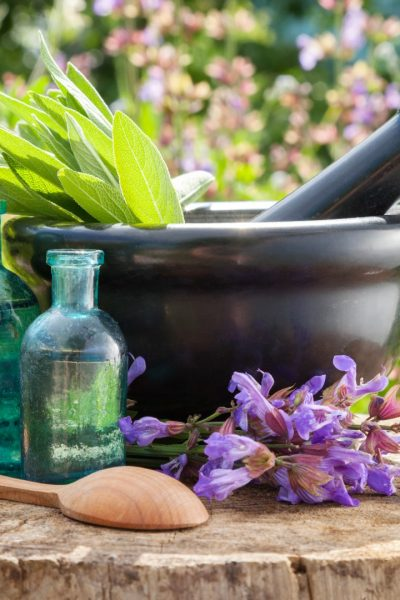 The Top Five Medicinal Herbs to Grow in Your Garden and How They Heal